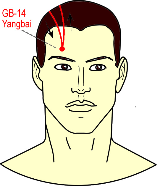 mkgreallifeblog: Acupuncture Points